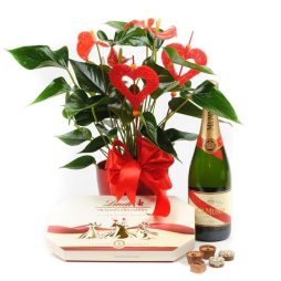 Flower Gifts